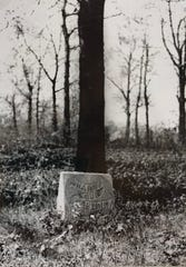 "A 1940 photo showing a headstone reading ""Harry Our Darling"" at Haskell Home Cemetery in Battle Creek."