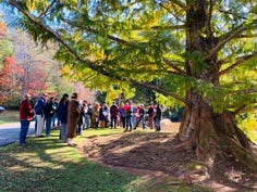 Treasured Tree kickoff in 2019 with the plaque installation at a dawn redwood in Christmount.