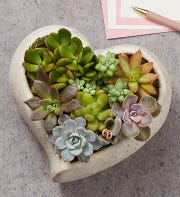 The Sweet Succulent Heart Garden will beautify any room.