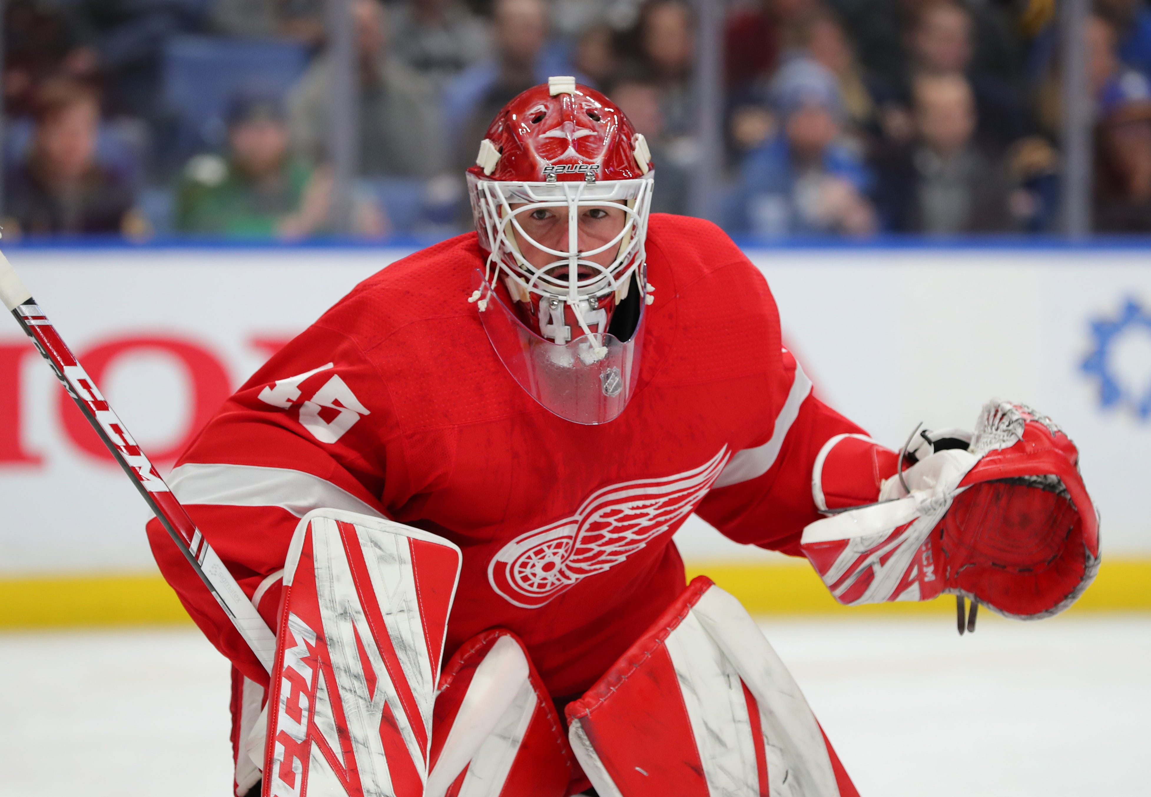 Detroit Red Wings 2020 21 Opening Lineup Our Predictions