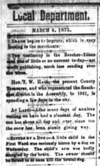 Local news in the Fond du Lac Commonwealth in 1875 was largely limited to a column of sentences or small announcements. Pictured is the top of that column from March 4.