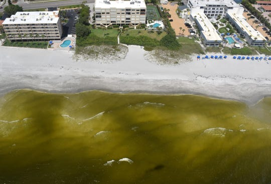 2018: A significant red tide bloom was visible from the air over Anna Maria Island, Longboat Key, and parts of Sarasota Bay on Wednesday, Aug, 8, 2018. The Herlad-Tribune flew over the barrier islands to investigate the harmful algal bloom in a Heli Aviation helicopter. Dead fish speckled the discolored water near Brandenton Beach.