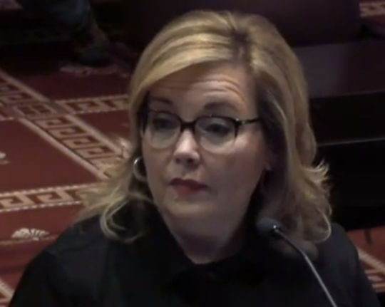 """Rutherford County Commissioner speaks to members of the Steering, Legislative & Governmental Committee about her concerns with a proposed """"Second Amendment Sanctuary County"""" resolution."""