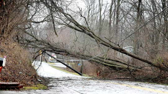 Springwood Road in York Township was closed after morning winds brought down trees across the roadway Friday, Feb. 7, 2020. Bill Kalina photo