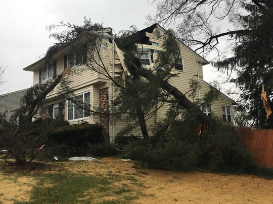 A tree went into a house on Brewster Drive following a tornado warning issued Friday morning.