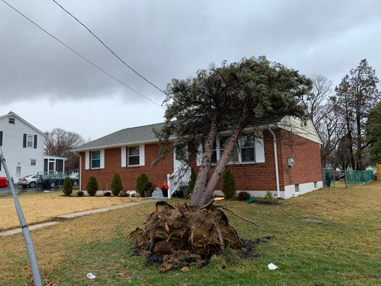 A brief storm that swept through northern Delaware Friday morning and prompted a tornado warning caused this tree to fall onto a home on W. Redwood Avenue.