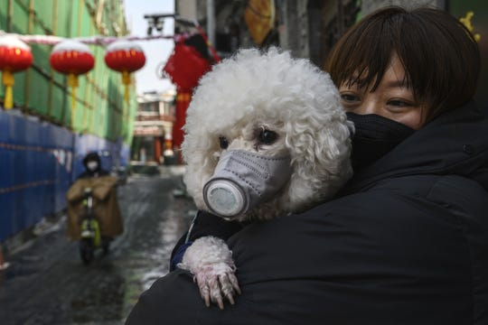 A dog wears a protective mask in Beijing, China.