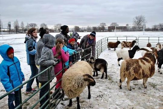 A petting zoo is part of Clark Park's annual Winter Carnival and Hockey Classic.