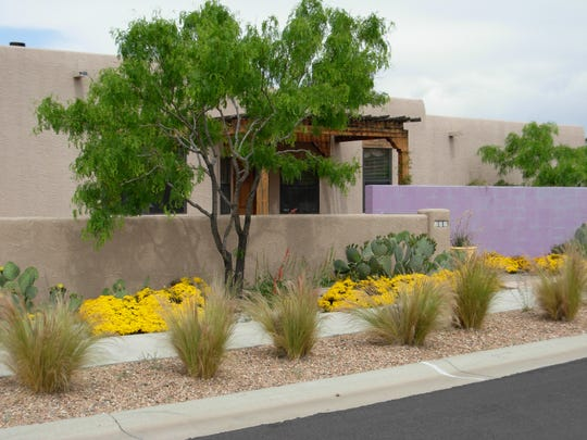 Producing striking landscapes in the desert southwest, while being water-wise, is the goal of the Las Cruces Utilities Lush and Lean series of free presentations. Join LCU Thursday evenings from March 5 through May 28.