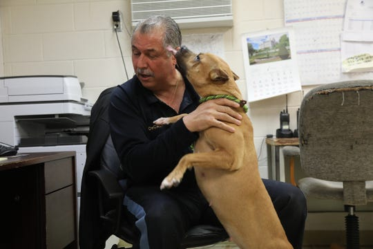 Paterson Animal Control Officer, John DeCando plays with one of the recent occupants at the Paterson Animal Shelter.