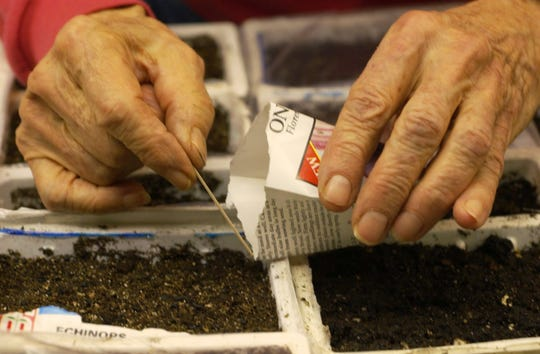 Flowers by Gabrielle in Roseville is hosting Seed Starting 101 on Feb. 22.