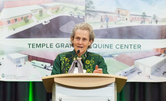 Temple Grandin, Colorado State University's world-renowned professor of animal sciences and autism advocate, speaks at the Tuesday groundbreaking for the Temple Grandin Equine Center in Fort Collins.