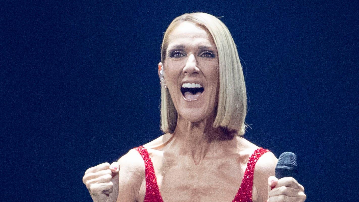 Celine Dion makes up for lost time, returning to Memphis for FedExForum concert