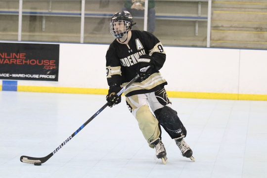 The Port Huron Yeti selected former Lindenwood University roller hockey player Jalen Krogman in the fourth round of the NRHL draft on Saturday, Feb. 8, 2020.