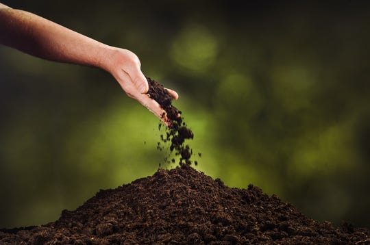 """Green burials honor the concept of """"dust to dust."""""""