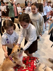"Students at Cathedral-Carmel School in Lafayette pet Gobi, a Chihuahua-Shih Tzu mix who has become famous since she met Australian ultrarunner Dion Leonard. He ran across the Gobi Desert with her in 2016 and wrote ""Finding Gobi"" about the experience. He shared that with students Monday, Feb. 10, 2020."