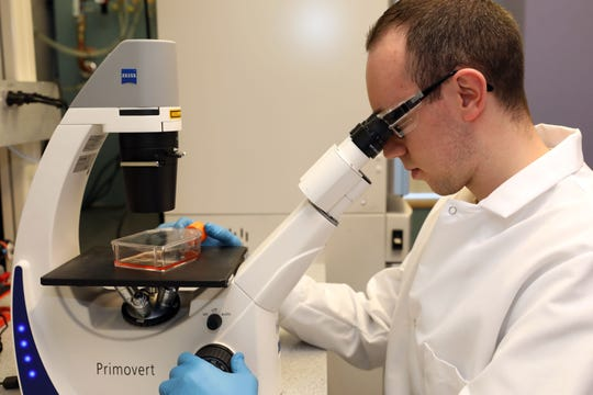 Vincenzo Russo, a research and development associate, monitors the health of cells being used in effort to create antibodies to treat people exposed to the novel coronavirus outbreak that originated in China, at Regeneron in Tarrytown, New York Feb. 10, 2020. The process involves injecting pseudo-coronavirus into genetically altered mice that produce human-like antibodies.