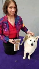 Patricia Faye Adcox with her Norwegian buhund Ghost. Ghost won an Award of Merit at the Best of Breed competition at the 2020 Westminster Kennel Show. The Wyoming dog was also the No. 1 owner-handled Norwegian buhund for the third straight year.