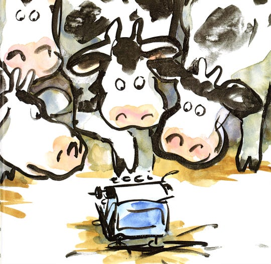 "A Betsy Lewin illustration from ""Click, Clack, Moo: Cows That Type,"" which will be presented Sunday in Abilene as a stage play."