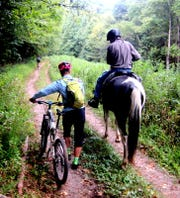Back Country Horsemen of Pisgah member Rick Calvert and mountain bikers share the trail on Reservoir Road in North Mills River area of Pisgah National Forest. The U.S. Forest Service has just released the Nantahala and Pisgah Forest draft plan that will guide forest management for the next 20 years.