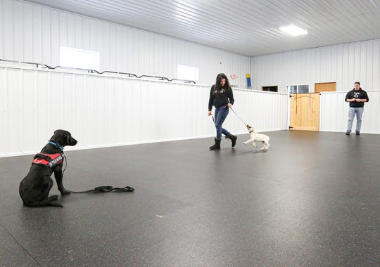 Jake Guell (right) works with Ana Ten Brink to train a service dog to avoid distractions like another dog crossing its path Tuesday, Jan. 28, 2020, in his training facility near Fond du Lac, Wis.