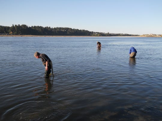 Left to right, Henry, Steve and Michelle, three of the five Miller siblings, during at epic clam hunt on Alsea Bay at Waldport.