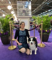 Lauren Bowman of Newark with her miniature American shepherd at the 2020 Westminster Kennel Show. Although Eli did not win any ribbons, Bowman said they both had a great time going to the show for the first time.