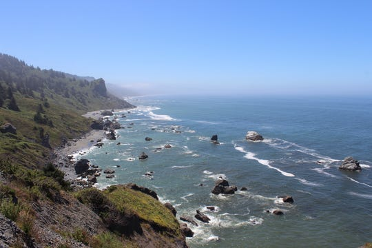During your visit to Prairie Creek Redwoods State Park, check out High Bluff Overlook, where you can scan for whales.