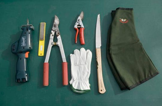 Tools recommended for pruning rosebushes, from left: reciprocal saw, sharpener, loper, goatskin gloves, bypass pruning shears, handsaw and gauntlets.