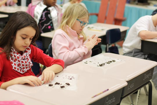 Third grade students at New Hopewell Elementary, Caroline Beeler, left, and Lexi Koons, top airdry clay with flower seeds to make 'seed bombs' on Feb. 12, 2020. The handcrafted gifts were given to residents at Williamsburg Villas on Valentine's Day.