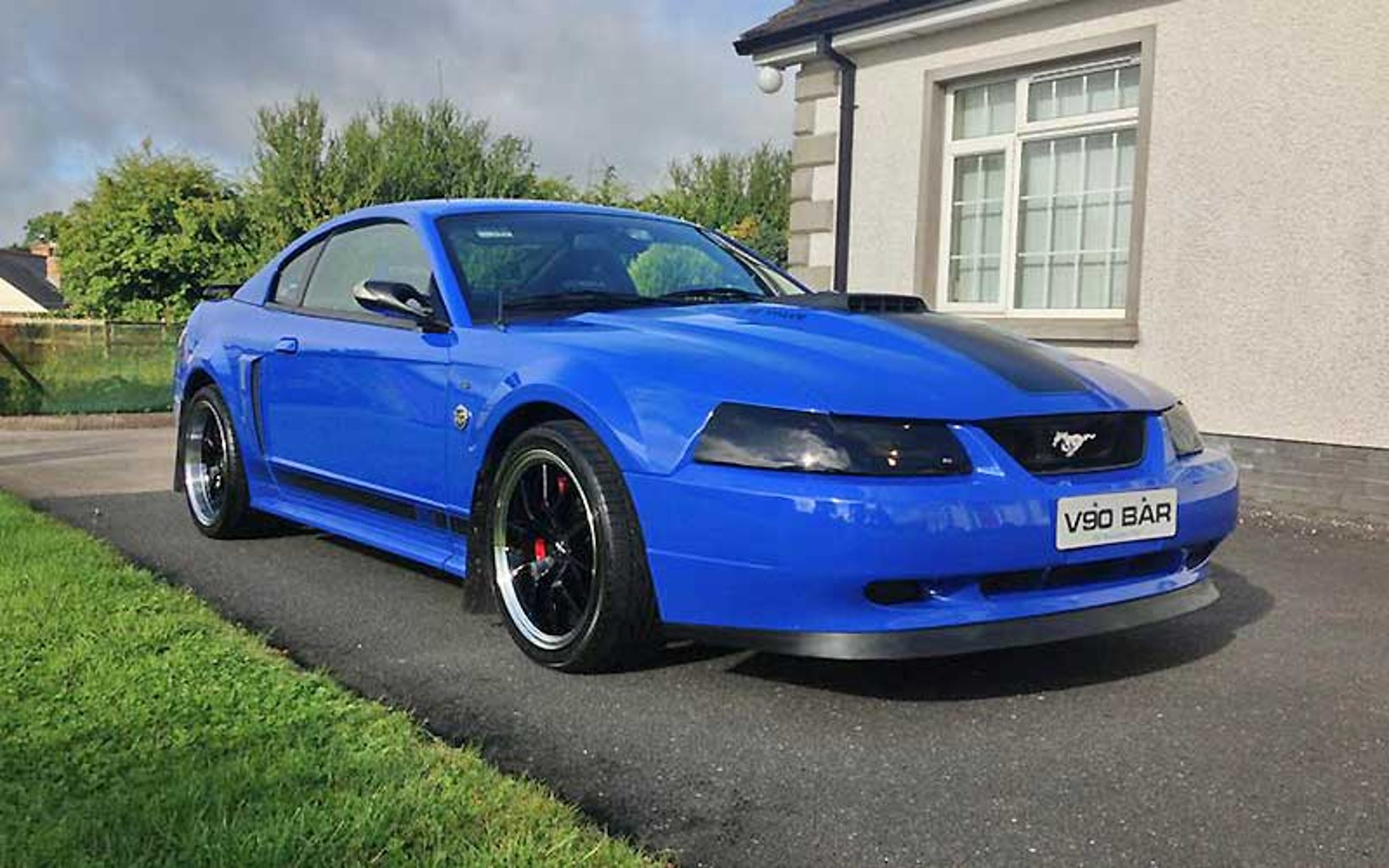 Special Edition Ford Mustangs 7 Of The Rarest Models