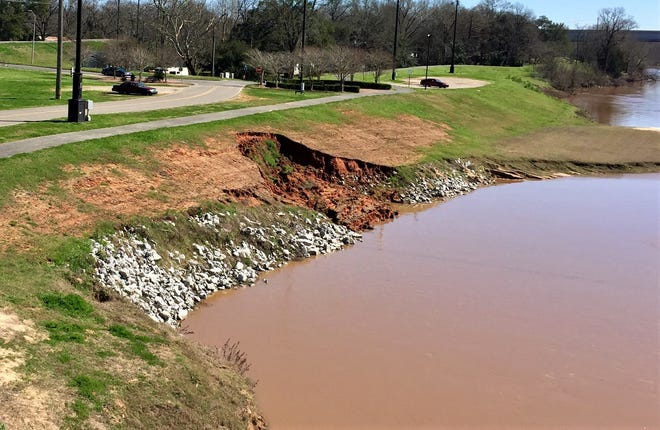 The levee on the Pineville side of the Red River has deteriorated again near the Gillis Long Bridge. If it gets worse, officials fear, access to Riverside Drive could be lost.