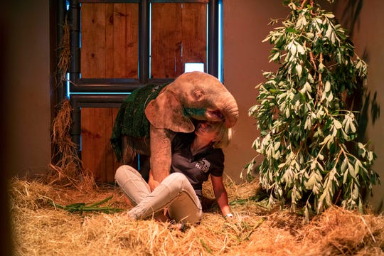 Adine Roode, founder of the Hoedspruit Elephant Rehabilitation and Development center (HERD), plays with Khanysia, a five-month-old albino elephant in Hoedspruit, South Africa.