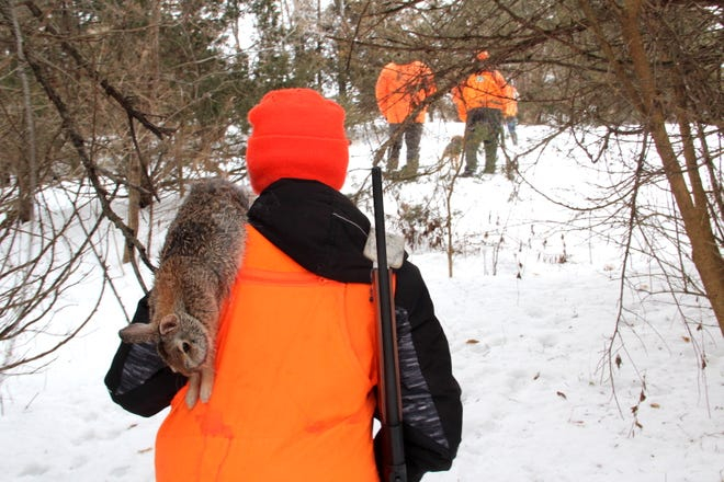 Laine Lawrence, 13, of Benton, Wis., carries a cottontail rabbit taken on a hunt with beagles near Hazel Green, Wis.