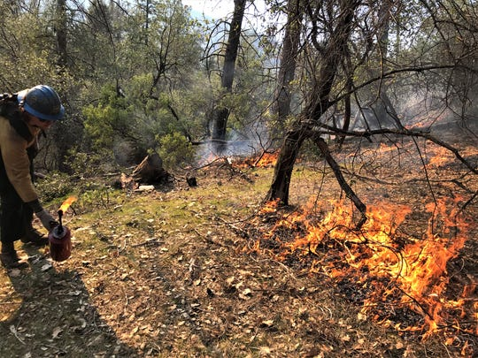 Alex Mulson, a firefighter for the Shasta-Trinity National Forest, helps ignite a control burn near Lake Shasta on Thursday.