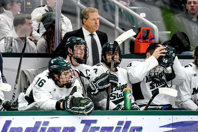 Michigan State's head coach Danton Cole looks on during the second period on Friday, Feb. 14, 2020, at the Munn Ice Arena in East Lansing.