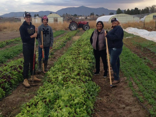 The Anthony Youth Farm, a 25-acre farm located south of Las Cruces near the Texas border, trains young farmers and pays dividends back into the community.