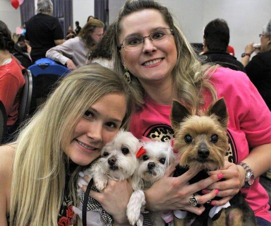 Sierra Lowe, left, and Kim Witkowski hold the wedding party - Coconut, the bridesmaid (Maltese); Cutie Pie, the bridge (Shih-Poo, a Shih-Tzu/Poodle mix) and Benjamin, the groom (Yorkie). The gals have been to 13 Fur Balls, their humans said, with Ben to the past three. They attended Saturday's event at the Abilene Convention Center.