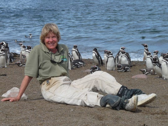 Dee Boersma is one of six finalists for the 2020 Indianapolis Prize, one of the top animal conservation awards in the world.