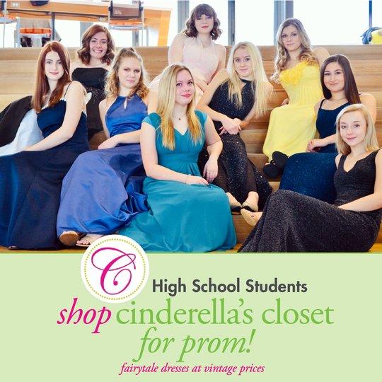 Livingston County high school students model prom dresses that will be available for $25 at Cinderella's Closet boutique events in March. Shown are, back row from left, Lexi O'Connell, Lauren Rauch and Nicole Caudy, middle row, Devin Douglas, Sidney Furge, Gabriela Gartner and Olivia Diakantonis, front row, Quinn Mallory, Kammy Killian.