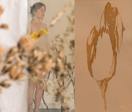 At left is Madeline Cass' yucca bloom nude, digital photograph, and at right, Rachel Means' Lily Layer series, 6 3/4 x 3 1/2 inches, ink on paper.