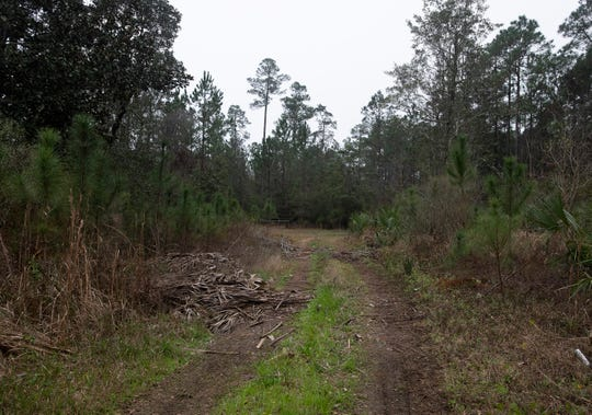 The Escambia County School District is proposing to build a new elementary school on this piece of land in Southwest Escambia County. Some residents and county leaders believe the futre home of the new Pleasent Grove Elementary School will help drive growth in the area.