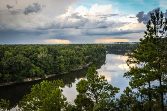 "Scenic images of Apalachicola Bluffs and Ravines Preserve, featured in ""Wild Florida"" episode."