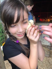 Hickory Nut Gap Farm's day camp is on the farm in Fairview.