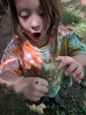 Asheville Farmstead School hosts Camp Farmstead all summer for children potty-trained to age 12.