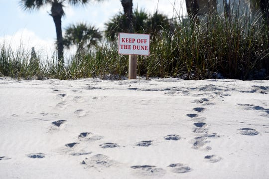 In an effort to protect dunes and native plants, signs have been placed along the beach between Seaquay Pier to Vista Del Mar Condos in Vero Beach to deter beachgoers from damaging the newly restored dunes.