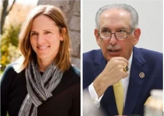 Mimi Rocah is challenging Westchester District Attorney Anthony Scarpino in a Democratic primary in 2020.