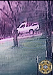 The St. Martin Parish Sheriff's Office is seeking information about the owner of this truck. A witness told authorities a person driving the truck stopped on a bridge in Henderson and dropped a bag of newly born puppies into the canal below before leaving.