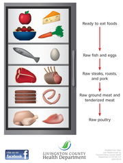 An infographic shows how to properly store different types of foods to avoid cross contamination, with ready to eat foods stored above raw fish, eggs, meat and poultry.