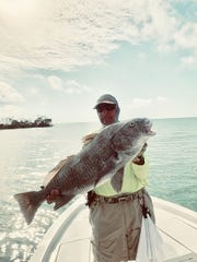 Bob Trento of Naples caught a large 35 pound black drum while fishing with Jim Kenney of Marco Island. Trento caught the fish just south of Marco on a Brown jig.